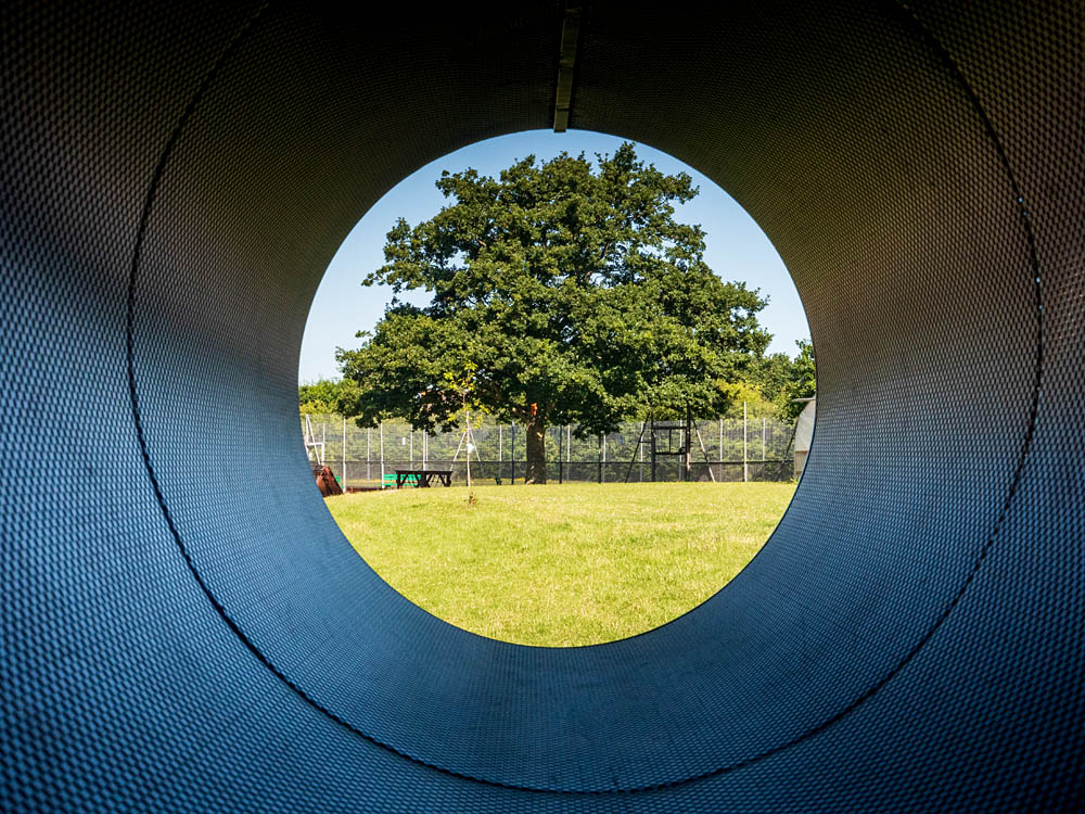 Tree viewed through play tunnel